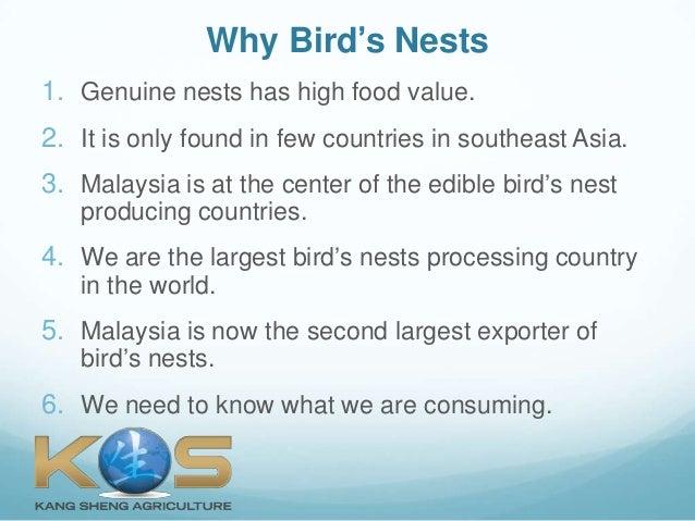 What is Bird's Nest?  (Singapore) Slide 2