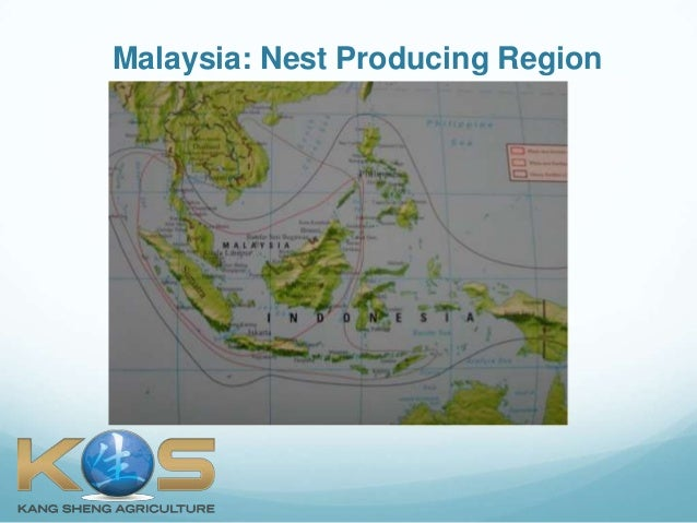 What is Bird's Nest?  (Singapore) Slide 3