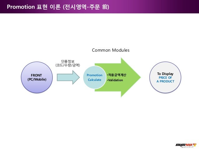 Promotion 표현 이론 (전시영역-주문 前)                                                    Common Modules                             ...