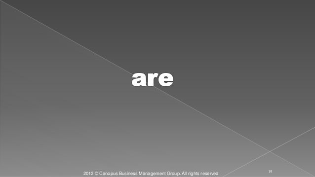 2012 © Canopus Business Management Group. All rights reserved 19