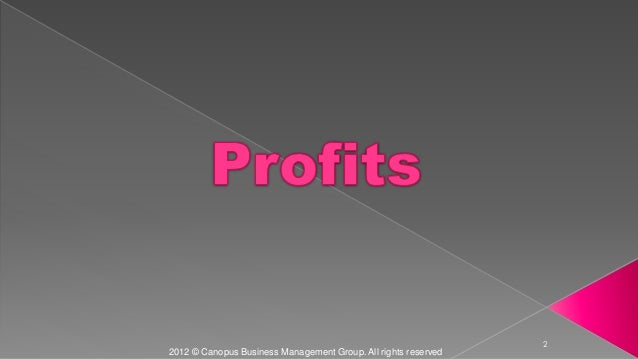 2 2012 © Canopus Business Management Group. All rights reserved