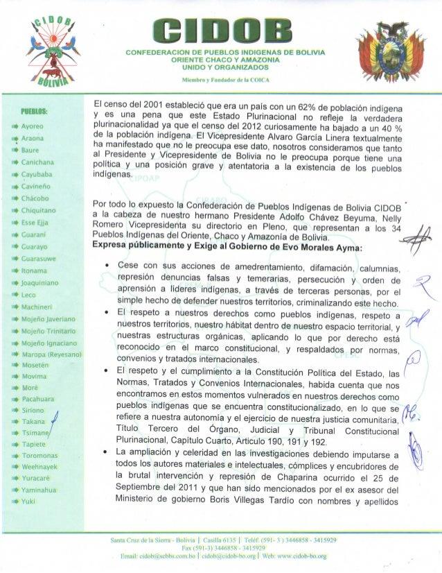 Pronunciamiento de cidob sobre sacha llorenti Slide 2