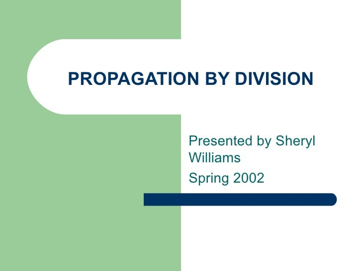 PROPAGATION BY DIVISION Presented by Sheryl Williams  Spring 2002