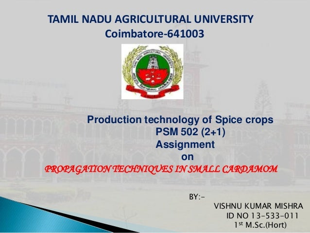 TAMIL NADU AGRICULTURAL UNIVERSITY Coimbatore-641003  Production technology of Spice crops PSM 502 (2+1) Assignment on PRO...