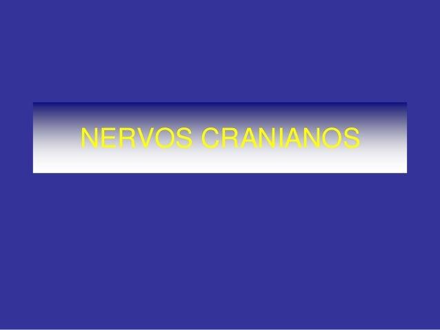 NERVOS CRANIANOS