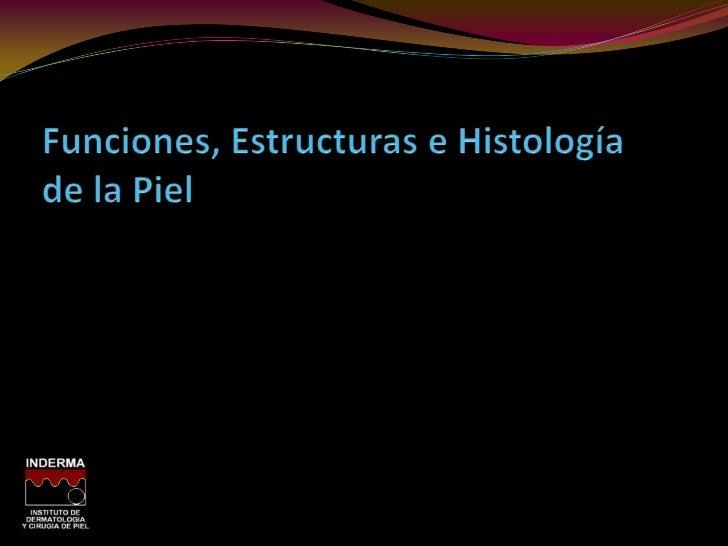 Propedéutica y semiología de la piel Slide 3