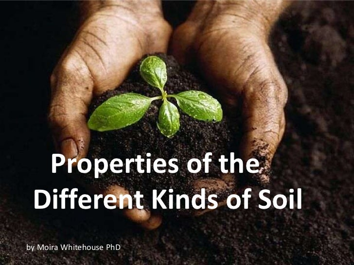 Properties of the Different Kinds of Soilby Moira Whitehouse PhD