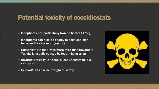 Potential toxicity of coccidiostats ▪ Ionophores are particularly toxic to horses (< ½ g). ▪ Ionophores can also be deadly...