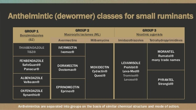 Anthelmintic (dewormer) classes for small ruminants GROUP 1 Benzimidazoles (BZ) GROUP 2 Macrocylic lactones (ML) GROUP 3 N...