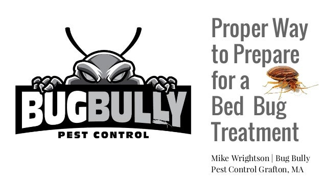 Proper Way to Prepare for a Bed Bug Treatment Mike Wrightson | Bug Bully Pest Control Grafton, MA
