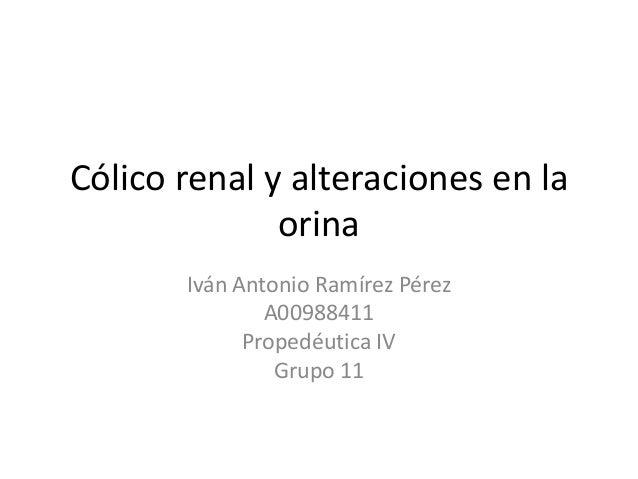 Cólico renal y alteraciones en laorinaIván Antonio Ramírez PérezA00988411Propedéutica IVGrupo 11
