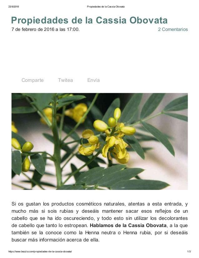 23/8/2018 Propiedades de la Cassia Obovata https://www.bezzia.com/propiedades-de-la-cassia-obovata/ 1/3 7 de febrero de 20...
