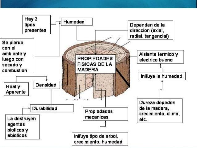 Propiedades de la madera - Propiedades de la madera ...
