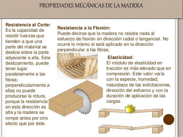 Propiedades de la madera - Maderas al corte ...