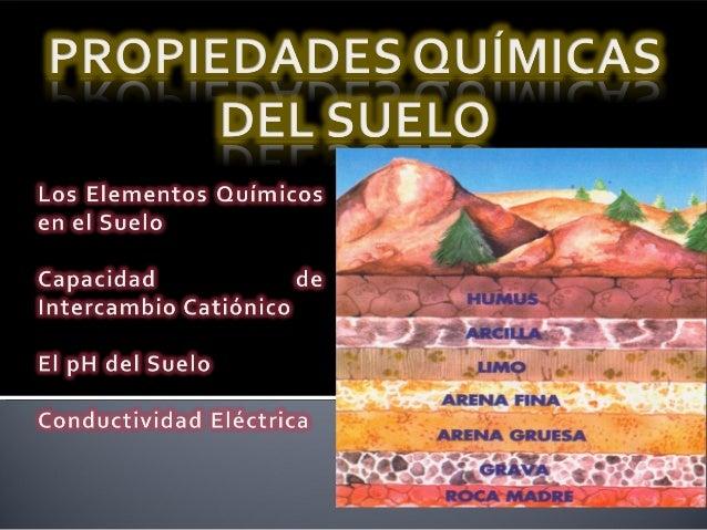 Propiedades quimicas del suelo for Componentes quimicos del suelo