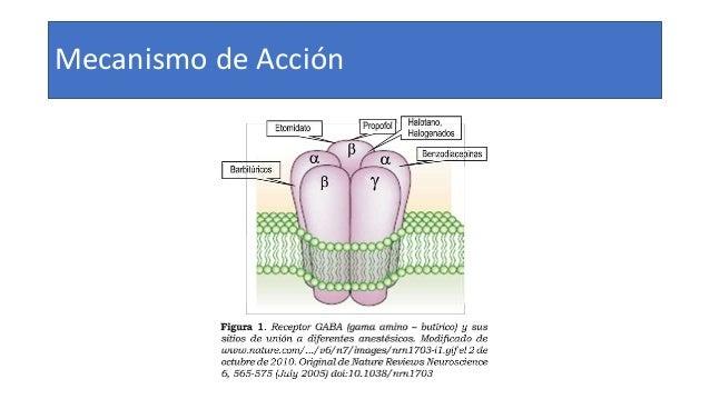 Efectos Cardiovasculares • Disminución de la presión arterial • Hipotensión puede revertirse • Factores desencadenantes • ...