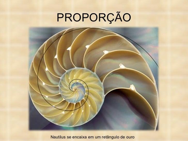 PROPORÇÃO Nautilus se encaixa em um retângulo de ouro