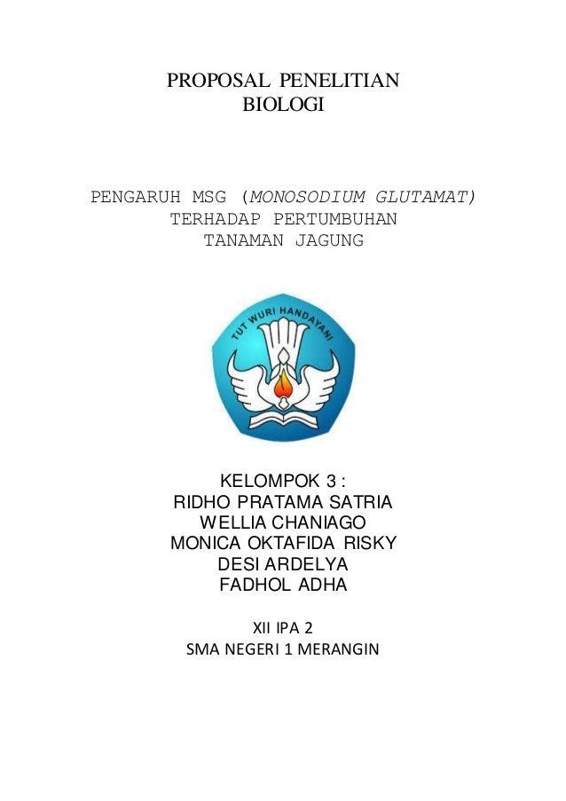PROPOSAL PENELITIAN BIOLOGI PENGARUH MSG (MONOSODIUM GLUTAMAT) TERHADAP PERTUMBUHAN TANAMAN JAGUNG KELOMPOK 3 : RIDHO PRAT...