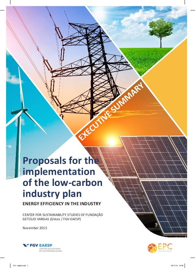 ENERGY EFFICIENCY IN THE INDUSTRY Proposals for the implementation of the low-carbon industry plan CENTER FOR SUSTAINABILI...