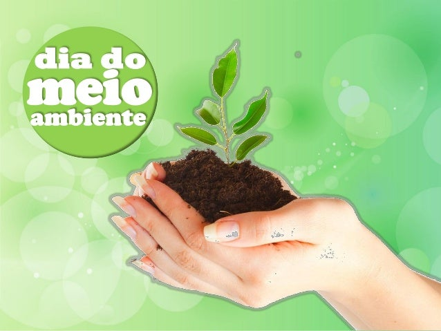 dia domeio  dia doambiente meio ambiente
