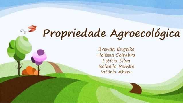 Propriedade Agroecológica Brenda Engelke Helíssia Coimbra Letícia Silva Rafaella Pombo Vitória Abreu
