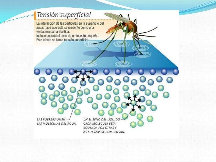 6eaafa620b1 Propriedades físico químicas da água e sua importância limnológica2