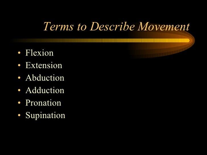 Terms to Describe Movement <ul><li>Flexion </li></ul><ul><li>Extension </li></ul><ul><li>Abduction </li></ul><ul><li>Adduc...