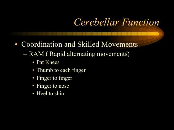 Cerebellar Function <ul><li>Coordination and Skilled Movements </li></ul><ul><ul><li>RAM ( Rapid alternating movements) </...