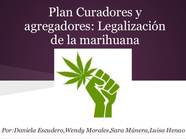 Plan Curadores y agregadores: Legalización de la marihuana Por:Daniela Escudero,Wendy Morales,Sara Múnera,Luisa Henao