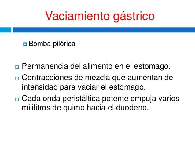 BOMBA PILORICA EBOOK