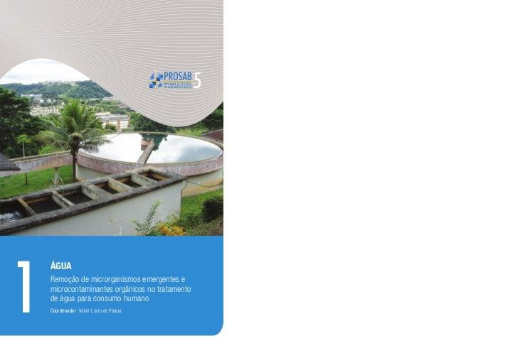 1    Água    Remoção de microrganismos emergentes e    microcontaminantes orgânicos no tratamento    de água para consumo ...