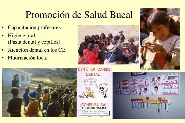 Promoción de Salud Bucal • Capacitación profesores • Higiene oral (Pasta dental y cepillos) • Atención dental en los CE • ...