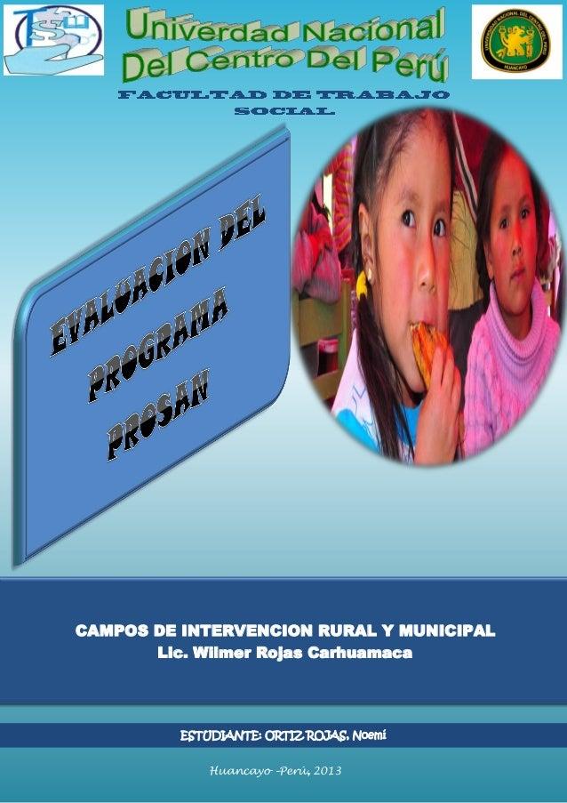 UNIVERSIDAD NACIONAL DEL CENTRO DEL PERU Huancayo – Perú 2013 CAMPOS DE INTERVENCION RURAL Y MUNICIPAL Lic. Wilmer Rojas C...