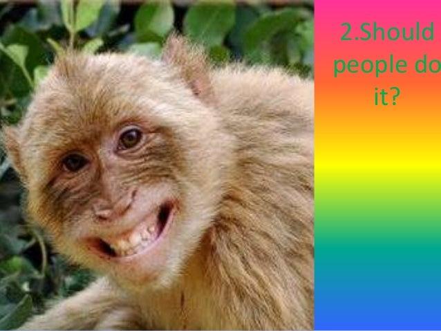https://image.slidesharecdn.com/prosandconsofkeepingwildanimalsaspets-140420113904-phpapp02/95/pros-and-cons-of-keeping-wild-animals-as-pets-3-638.jpg?cb\u003d1397994468