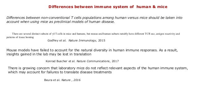 Differences between non-conventional T cells populations among human versus mice should be taken into account when using m...