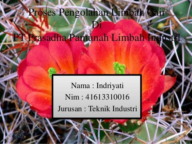 Proses Pengolahan Limbah Cair Di PT Prasadha Pamunah Limbah Industri  Nama : Indriyati Nim : 41613310016 Jurusan : Teknik ...
