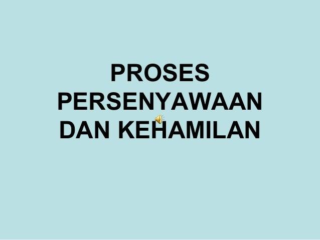 PROSES PERSENYAWAAN DAN KEHAMILAN