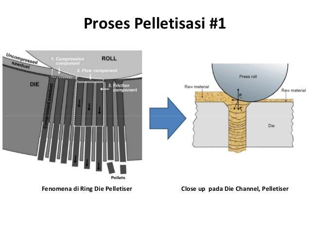 Proses Pelletisasi #1 Fenomena di Ring Die Pelletiser Close up pada Die Channel, Pelletiser