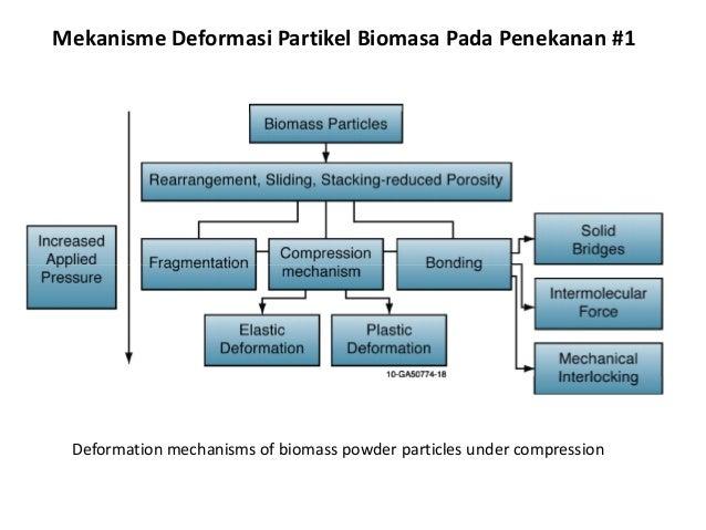 Mekanisme Deformasi Partikel Biomasa Pada Penekanan #1 Deformation mechanisms of biomass powder particles under compression