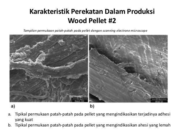 Karakteristik Perekatan Dalam Produksi Wood Pellet #2 Tampilan permukaan patah-patah pada pellet dengan scanning electrone...