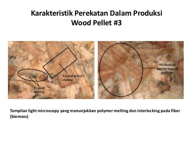 Karakteristik Perekatan Dalam Produksi Wood Pellet #3 Tampilan light microscopy yang menunjukkan polymer melting dan inter...