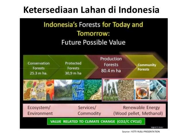 Ketersediaan Lahan di Indonesia Source : YETTI RUSLI PRESENTATION