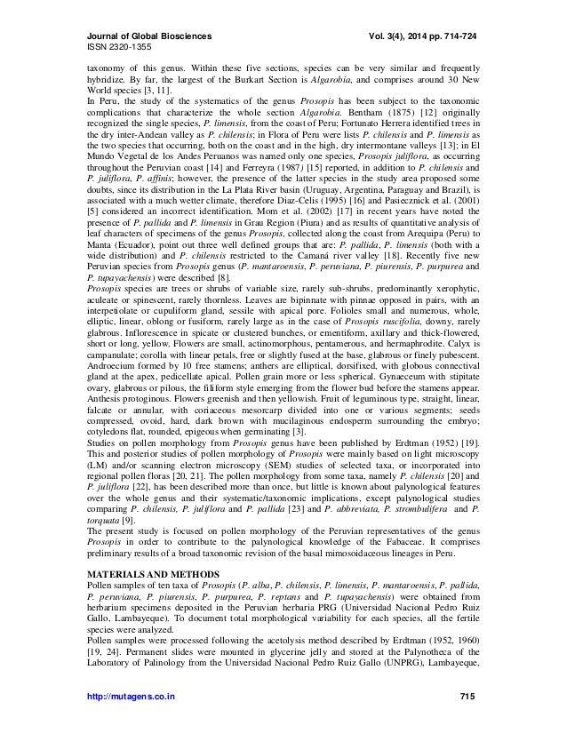 yeoman resume stunning navy resume gallery simple resume office