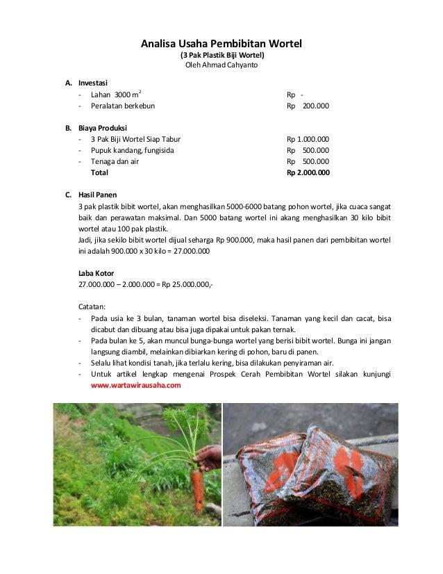Analisa Usaha Pembibitan Wortel  (3 Pak Plastik Biji Wortel)  Oleh Ahmad Cahyanto  A. Investasi  - Lahan 3000 m2 Rp -  - P...
