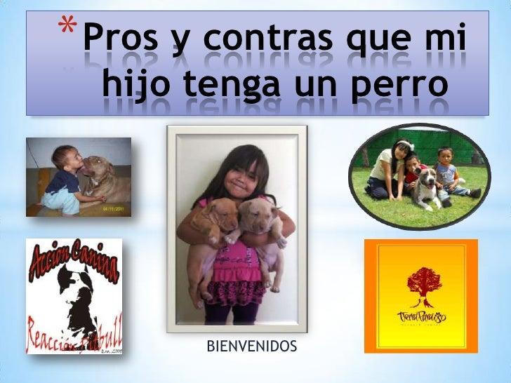 * Pros y contras que mi  hijo tenga un perro        BIENVENIDOS