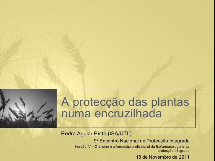 A protecção das plantasnuma encruzilhadaPedro Aguiar Pinto (ISA/UTL)                 9º Encontro Nacional de Protecção Int...