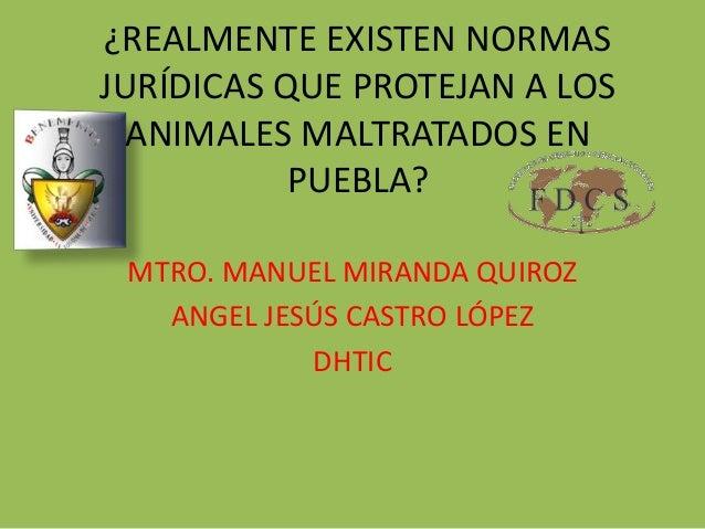MTRO. MANUEL MIRANDA QUIROZ ANGEL JESÚS CASTRO LÓPEZ DHTIC ¿REALMENTE EXISTEN NORMAS JURÍDICAS QUE PROTEJAN A LOS ANIMALES...