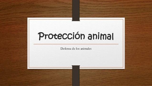 Protección animal Defensa de los animales