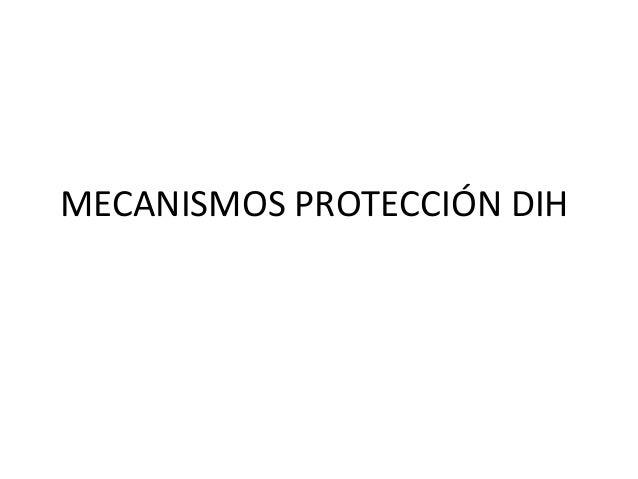 MECANISMOS PROTECCIÓN DIH
