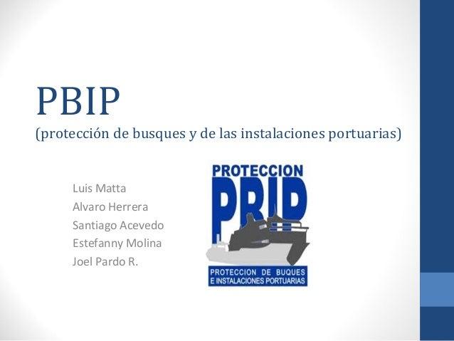 PBIP  (protección de busques y de las instalaciones portuarias)  Luis Matta Alvaro Herrera Santiago Acevedo Estefanny Moli...
